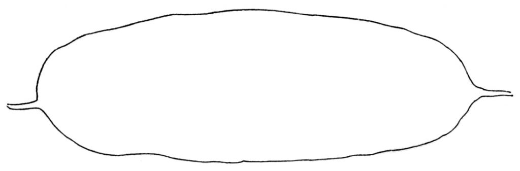 Fig. 12, p. 19